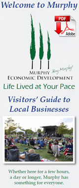Buy Murphy Welcome Brochure